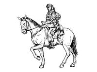 US mouted soldier in Afganistan 1 fig.+horse