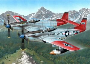 "F-82H Twin Mustang ""Alaskan All Weather Fight"