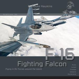 F-16 Fighting Falcon Flying in Air Forces around the World  - 1