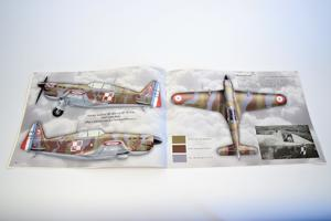 Camouflage and Decals Caudron CR.714; Morane Ms.406;Curtiss Hawk H75A 1/32  - 5