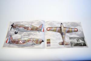 Camouflage and Decals Caudron CR.714; Morane Ms.406;Curtiss Hawk H75A 1/48  - 5