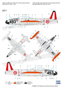 T-33  'Japanese and South American T-Birds'  - 5