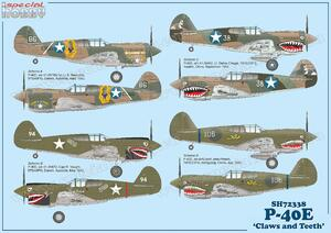 P-40E Warhawk  'Claws and Teeth'    - 7